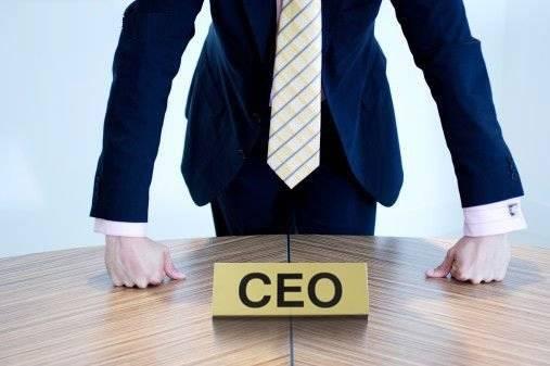 Quanto guadagna il CEO di una startup?
