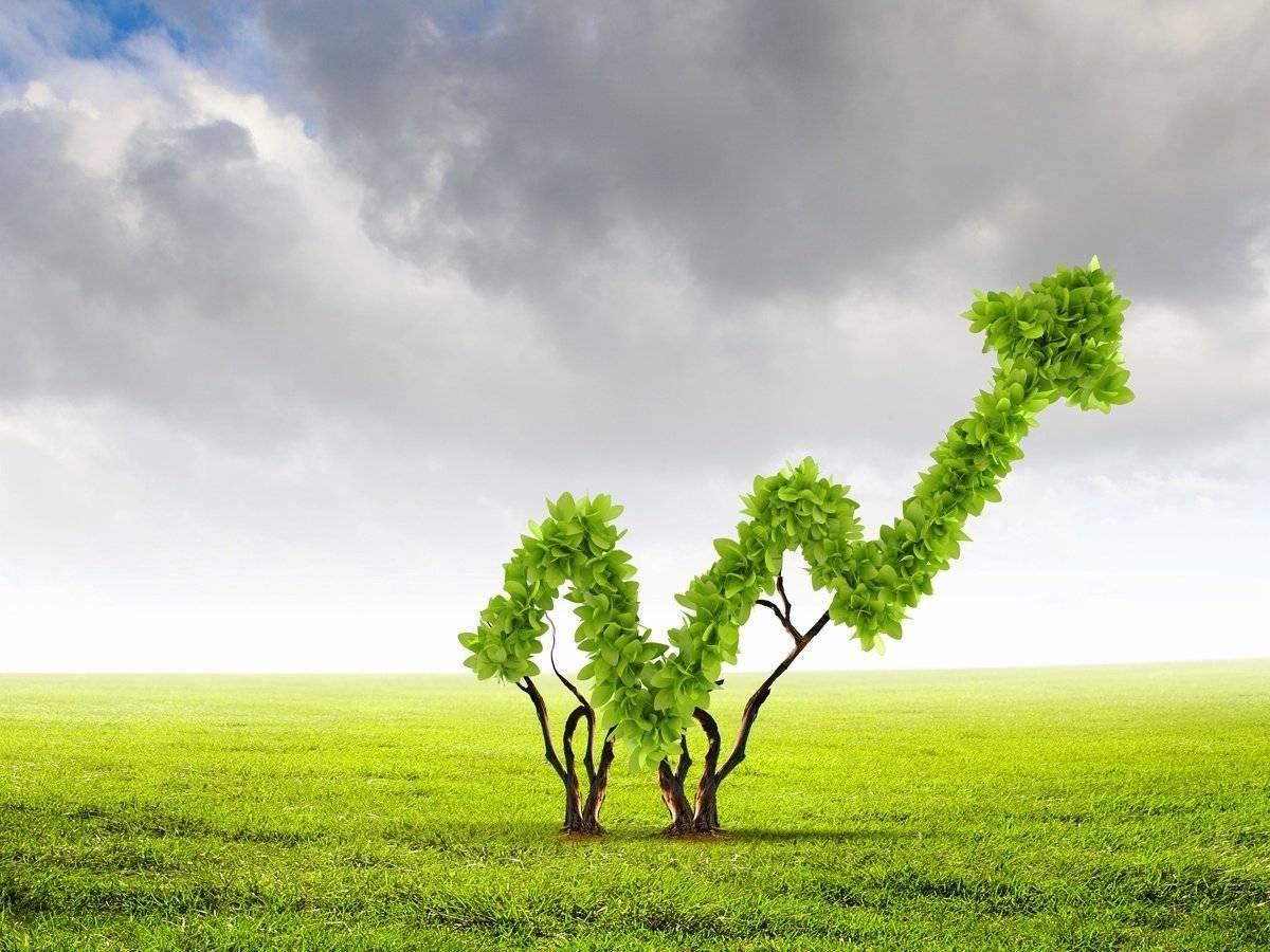 L'equity crowdfunding fa bene all'ambiente. Le campagne di successo su CrowdFundMe