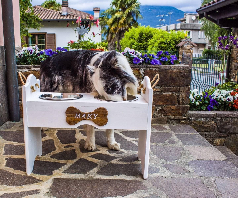 Tavolini da pranzo per cani? Li ha inventati una famiglia di edicolanti veneziani!