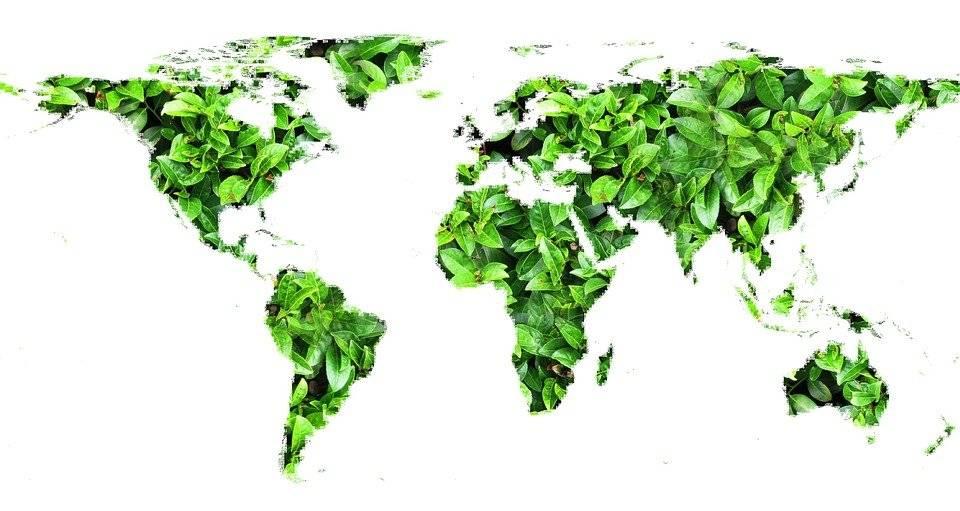 Fintech, oltre un quarto è Green & Social